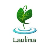 Workshop: Using the Laulima Gradebook