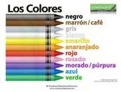 ¿Qué Pasa en la clase de español? – Kindergarten