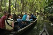 Kerala Trip Specials - Kerala Backwaters