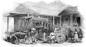 Slave Labor in Brazil