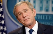 Confused George W. Bush