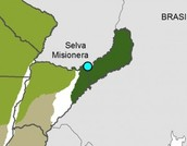Region donde se encuentra