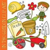 Volunteer - KP Vegetable Garden
