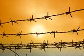 Facts about Barbed Wire