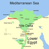 the Nile delta location