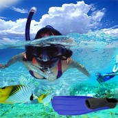 What is snorkelling