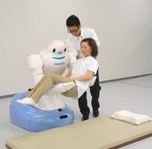 Describe the impact that this robot has had or could have on its intended audience