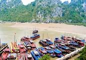 About Vinh Ha Long