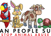 Animal abuse in the usa