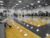 Volleyball vs. Jarrell