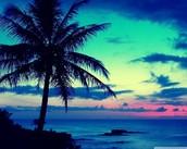 Enjoy numerous beautiful sunsets!