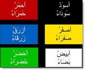 Arabic - Sr. Fatima