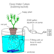 Water Culture systems
