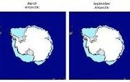Ice in Antartic