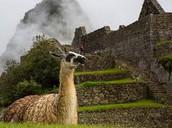Machu Picchu los fotos dos