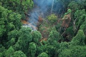 Ecological Problems Appeared in Kenya