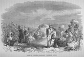 Scene on a Cotton Plantation