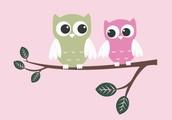 Jamie Tucker-Independent Designer Origami Owl