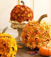Chrysanthemums on a Pumpkin