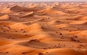 Sand! Sand! Sand!