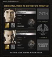 District 3 Tributes