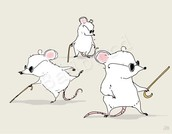 Mice on their way to party