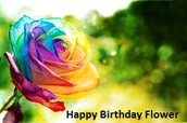 Happy Birthday Flower Is A Lovely Surprise And Share For Friend\'s Birthday