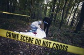 What Is Forensic Psychology?