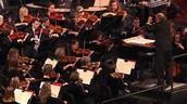 Philharmonic player (Concert violinist)