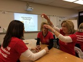 Marshmallow Challenge Cooperative Learning Experience