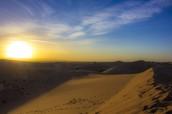 Unforgiving Desert