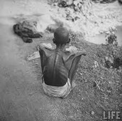 What were the causes and results of the Bengal Famine in 1943?