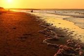 Beach in Prince Edward Island National Park