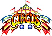 CIRCUS OZ FESTIVAL IS COMING!!!!!!!!