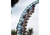 Question 4: Do you need a shoulder harness on a looping coaster?