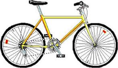 The Best Bike Rental In Town.!