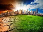 INDI REYNOLDS CLIMATE CHANGE