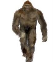 Artist rendering of Bigfoot