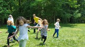 Fun games to learn about bird habitats.