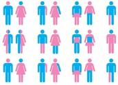 Understanding Gender Identity & Sexuality