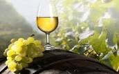 Joanna's winery