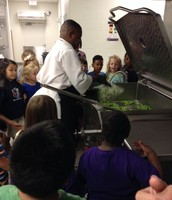 Chef Danny cooking our lunch veggies!