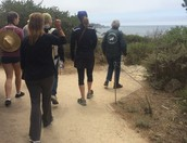 Go on a French guided hike of Point Lobos State Park