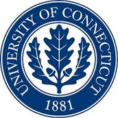 University of Connectict