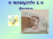 O Mosquito e o Touro