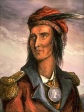 Tecumseh Brief Summary