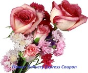 Locating Help On Level-Headed Solutions In Flower Delivery Express Coupon