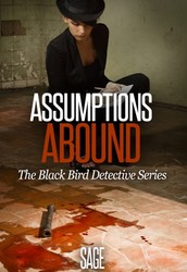 Introducing the Black Bird Detective Series
