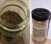 Marjoline