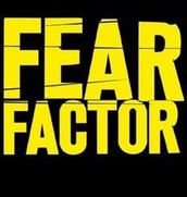 Fear Factor Family Night